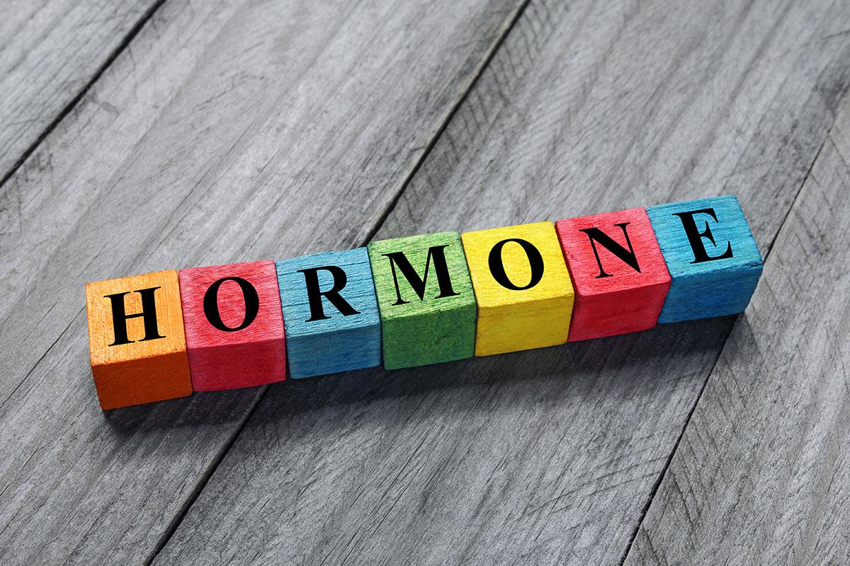 Hormone-Hormonsprechstunde